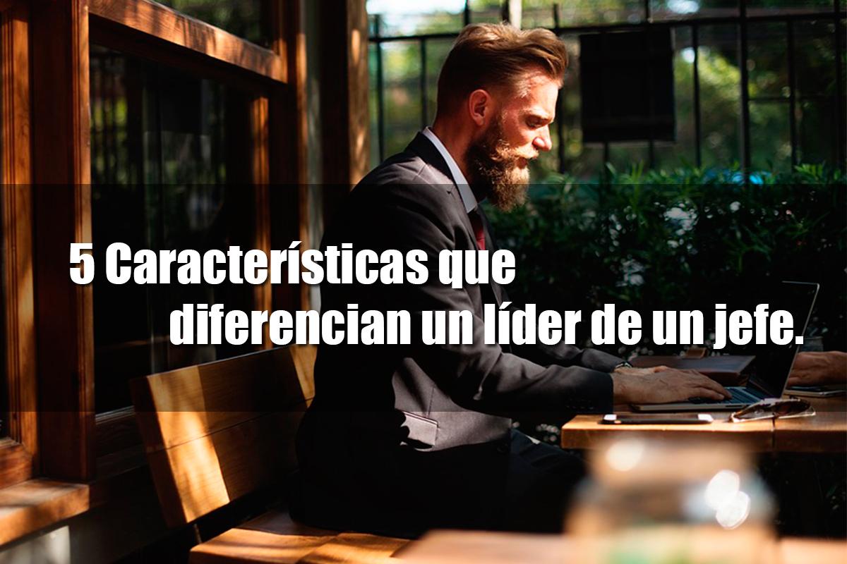Líder www.tunegocioenusa.com